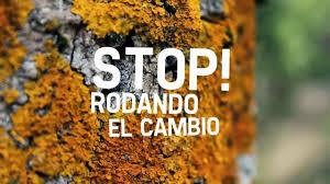 stop-rodando